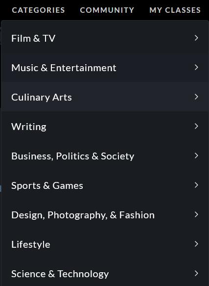 Masterclass-Kurse-Kategorien-Screenshot